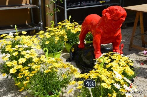 Cadouin,ancolies,roses,pollen,osier,photos Fabien,coquelicots 051.JPG