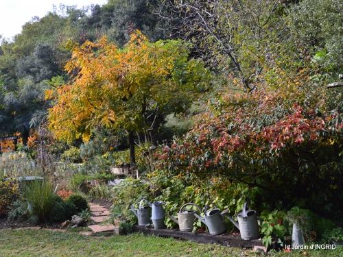 jardin automne,voisinage,canal 048.JPG