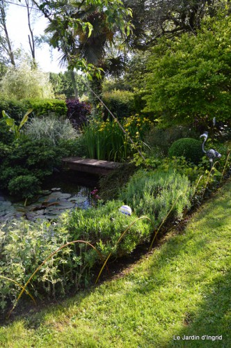 canal,fleurs blanches,marguerites,LE FLEIX,osier 176.JPG