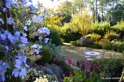 pigeons,jardin,anniversaire Ines,cygnes 001.jpg
