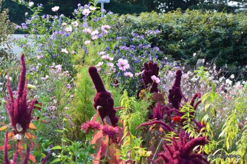 jardin Mme Perichou,grandes fleurs,bouquet,jardin 023.JPG