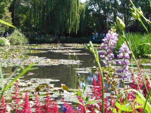 Normandie,jardin Monet,baie de Somme,chez Marylaur 200.JPG