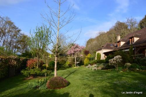 paquerettes,arums,laurier palme,jardin 070.JPG