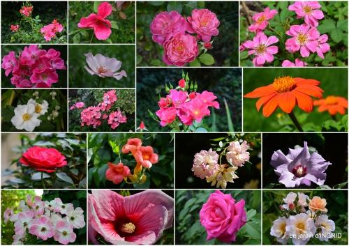 2015-08-25 roses,bouquet rose,dahlias,jardin2.jpg