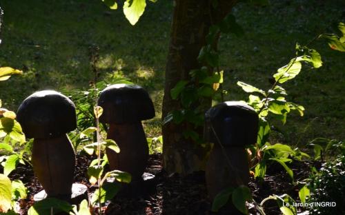 jardin,puces Lasmonzie,asters 008.JPG
