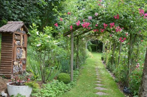 tour du jardin en juin 044.JPG