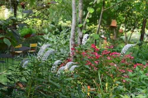 hémérocalles,les filles,les cygnes,la passerelle,moi,jardin 125.JPG