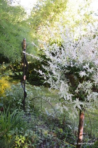 jardin avril et mai, 100.JPG