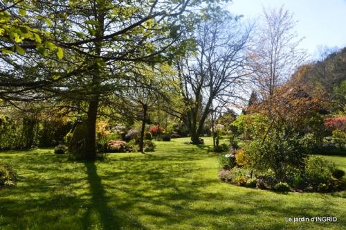 jardin confiné ,osier,magnolia jaune 133.JPG