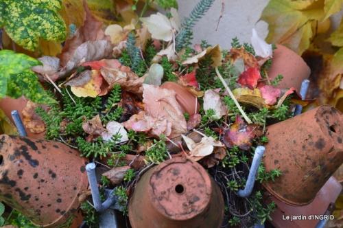 canal,automne,tonte des feuilles 002.JPG