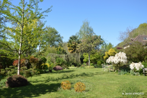 colline,orchidée,nature,jardin fleuri 126.JPG
