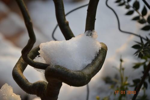neige sous le soleil 003.JPG