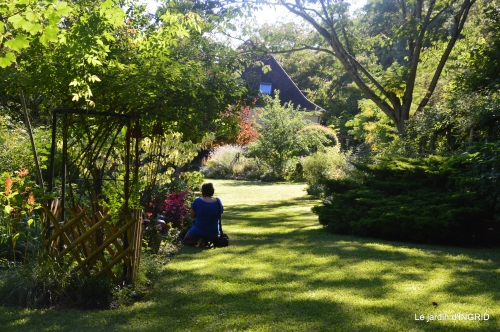 jardin été,hydrangeas,journaliste 165.JPG