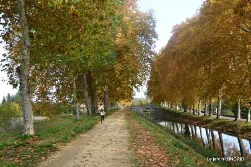canal automne ,jardin,Ines 117.jpg
