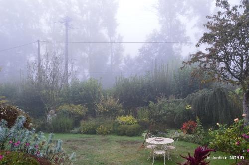 brouillard le matin d'automne 015.JPG