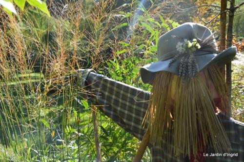 ménage automne,plectanthrus,feuillages 011.JPG