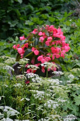 épouvantails ,jardin,roses 024.JPG