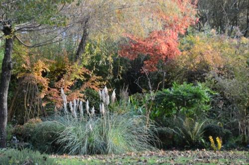 canal automne ,jardin,Ines 033.JPG