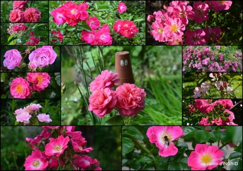 2016-06-06 jardin,portes ouvertes,Julie2.jpg