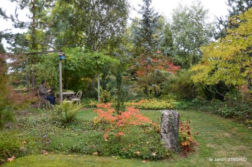 brocante st avit Se.jardin st Avt,récolte tomates 158.JPG