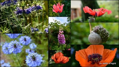 2014-05-30 épouvantails,jardin,crapaud,Le Dorlou.jpg