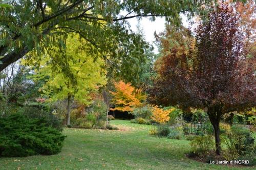 les arbres en automne,cabane 020.JPG