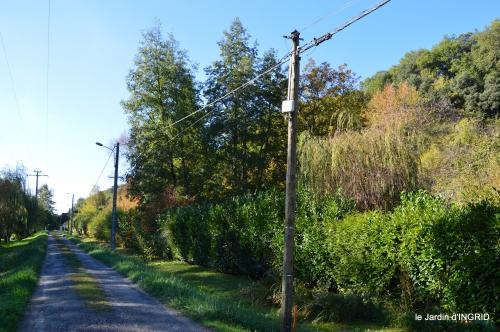 jardin automne,voisinage,canal 160.JPG