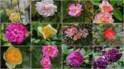 2013-05-28 affichette,roses et autres,patricia visite1.jpg
