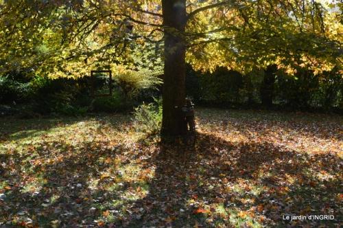 canal automne ,jardin,Ines 021.JPG