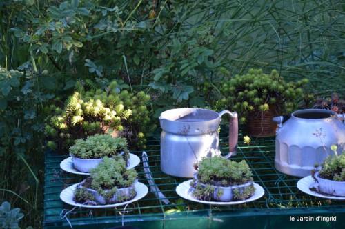 Fabien et Mélo,les filles,tomates,jardin ombre 068.JPG
