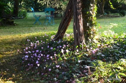 male ancienne,septembre jardin,couronne,bouquet 091.JPG