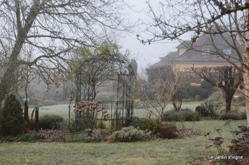 jardin givré,oiseaux 037.JPG