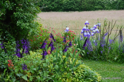 maison,jardin Bernadette,et jardin Claudine 087.JPG