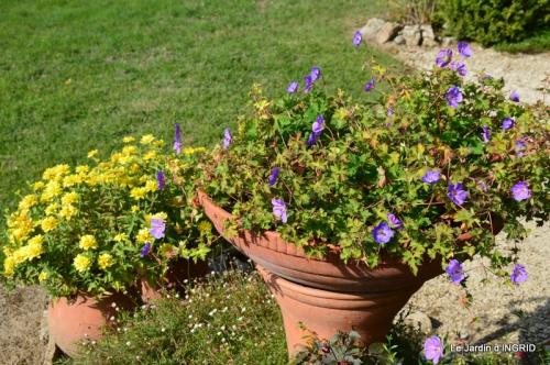 jardin Mme Perichou,grandes fleurs,bouquet,jardin 026.JPG