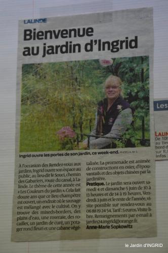 jardin,chez Bernadette,puces,cygnes,pluie 006.JPG