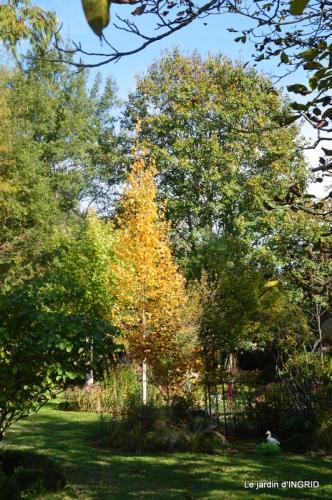 Fête de la noix Molières,automne,bouquet 038.JPG