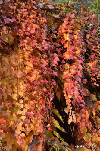 canal,automne,tonte des feuilles 074.JPG