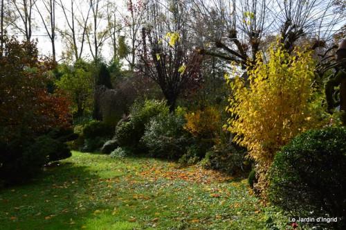 automne,arbres,inondation 113.JPG