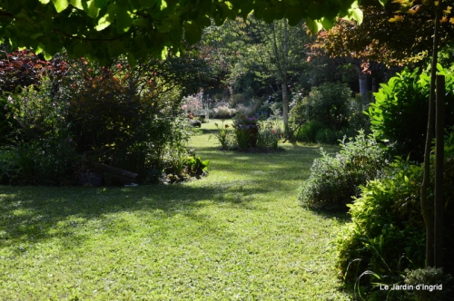 en juin jardin 159.JPG