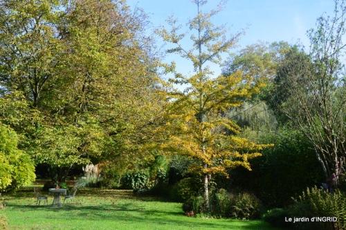 citrouille fleurie,décos jardin,automne 069.JPG