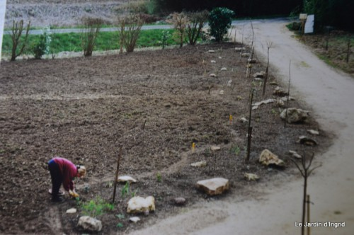 jardin,le cypres chauve,puces Mouleydier,vieilles photos 163.JPG
