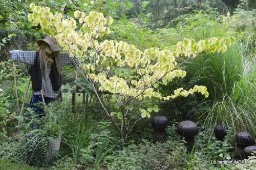 bouquet d ete,Plambouissin,grotte ,Erignac,Campagne,Julie 112.JPG