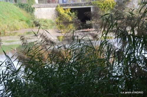 canal automne ,jardin,Ines 098.JPG