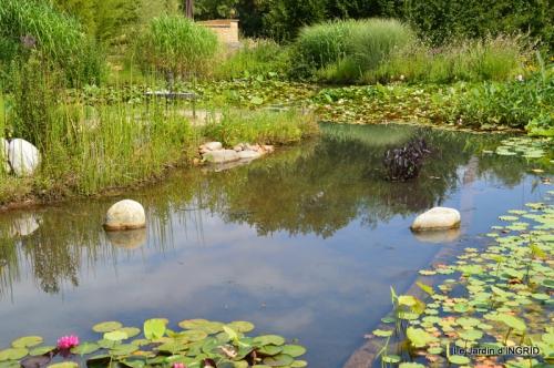 les jardins d'eau de Carsac 013.JPG