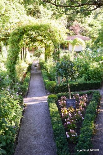 jardin ,bord de la Dordogne,cygnes 046.JPG