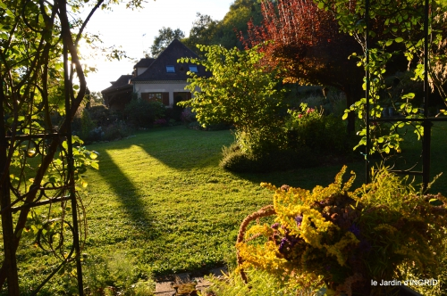 cygnes,jardin,apres la tonte 088.JPG