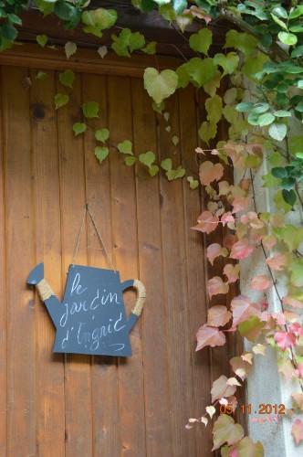 Ciron,feuilles d'automne,safran,taille érable 129.JPG