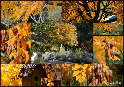 2015-10-21 automne, décos cucurbitacées,jardin.jpg