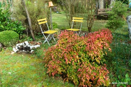 jardin,changement,grande haie,pigeons,écureuil 037.JPG