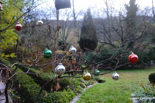 décos Noel au jardin,Sarlat,étoile en osier 202.JPG